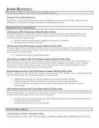 What Is A Resume Title Examples - Template