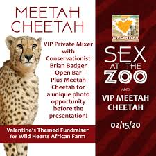 Valentine | Wild Hearts African Farm & Petting Zoo