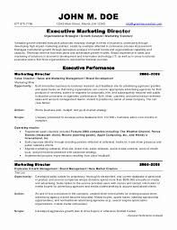 Excecutive Marketing Director Sample Resume ...