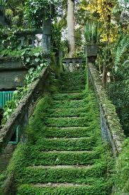 Pin By Pure Soul On Emo Pinterest Abandoned Places Natural New Pure Soul Pic Pinterest