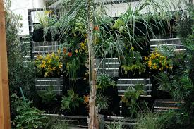 Full Size of :52 Hanging Garden For Balconies Hanging Gardens Of Barcelona  Balconies Succulent Plant ...