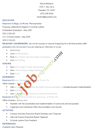 Format Of Curriculum Vitae Cv In Application Letter Profesional