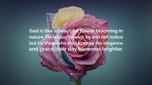 "Flower Quotes About Beauty Best of Tom Krause Quote ""God Is Like A Beautiful Flower Blooming In Nature"