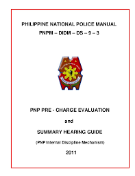 Before you review the two sample papers, you might need a little help getting together your ideas for your paper. Pnp Pre Charge Evaluation And Summary Hearing Guide