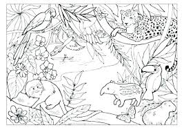 coloring pages of jungle animals jungle coloring pages and jungle animals coloring page free to print coloring pages of jungle animals