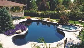 Designer Pools And Spas Jamestown Ny Free Form Betz Pools Vinyl Pool Pool Designs Pool Liners