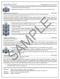 Executive Resume Sample | Chief Executive Officer Executive Resume ...