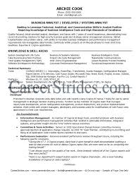 Business Analyst Resume Summary Full ...