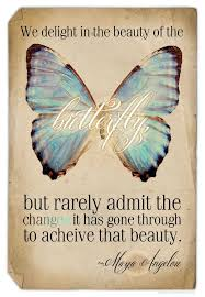 Butterfly Quotes Adorable Pin By Carolyn R On Quotes Pinterest Butterfly Wisdom And Maya