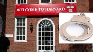 They're smart, and they're kinky: Harvard University has a club for students