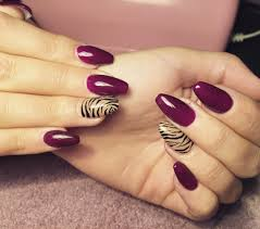 Nail Designs : Fuchsia Zebra Print Tips Nail Design Unique Zebra ...