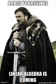 brace yourselves linear algebra is coming - Brace Yourselves. John ... via Relatably.com