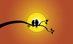 two love bird silhouette. Beautiful Silhouette Happy Young Love Birds On Tree Branch During Sunset  Two Youthful Bird  Silhouettes Sitting Throughout Love Bird Silhouette O