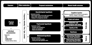 physical activity for cognitive and mental health in youth a figure