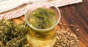 pot stem tea