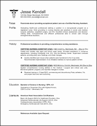 Nursing Student Resume Examples Lovely Example Nursing Student ...