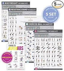 Abs Exercise Chart Images