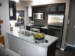 condo kitchen designs. small spaces - beautiful condo kitchen designs n
