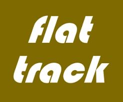 ama pro flat track series logo flat track 300 x 250
