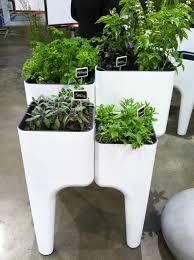 Kitchen Garden Herbs Kitchen Garden Planter Home Design Ideas