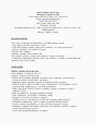 Hair Stylist Resume Examples Examples Fashion Stylist Resume
