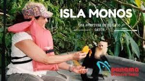 Image result for isla monos panama
