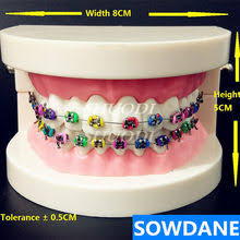 resin <b>teeth</b>