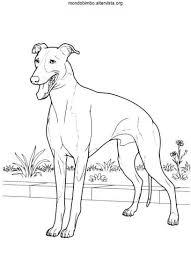 Eccezionale Disegni Da Colorare Di Cani Cuccioli Migliori Pagine