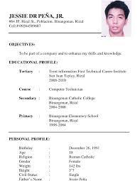 Resume Format Cv Format Download Professional Cv Template Pdf