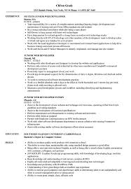 Junior Web Developer Resume 20518 Communityunionism