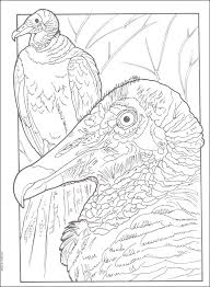 Small Picture Exotic Birds Creative Haven Coloring Book 060858 Details