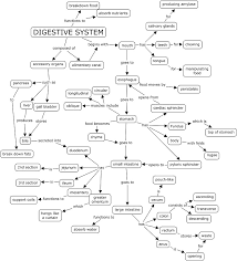 digestive system concept map digestive system concept map answer key answer key