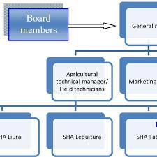 Usaid Org Chart A Representative Organization Chart For Cooperative