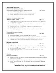 Professional Profile Resume Interesting Sample Resume Profile Statements And Objectives Statement Examples