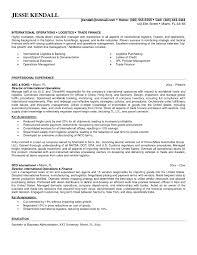Sample Resume For International Business Development Inspirationa