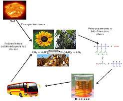 quais so as vantagens apresentadas pelos biocombustveis