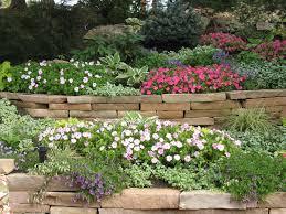 colorado native plants | Landscape Plant Materials for Colorado Springs
