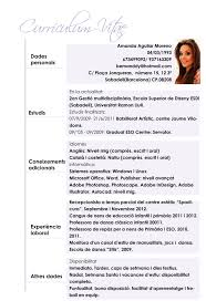 Comfortable Curriculum Vitae European Format Word Ideas