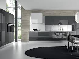 Black High Gloss Kitchen Doors Download Neoteric Modern Cabinet Doors Teabjcom