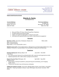 Job Experience Resume Template Best Of Job Experience Resume Example