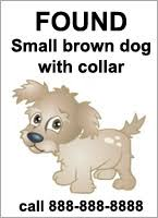 how to make lost dog flyers adopt a pet com blog tips if you find a stray pet adopt a pet com blog