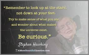 Curiosity Quotes Quotes About Questioning A More Beautiful Question by Warren Berger 58