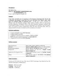 Sample Resume Of Net Developer Sample Resume Net Developer Vintage Sample Resume For Experienced 7
