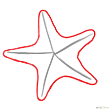 Small Picture How To Draw A Sea Star Draw Starfish Step 6jpg Coloring Pages