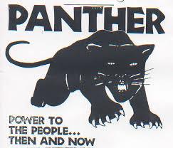 The Black Panther Unity Images?q=tbn:ANd9GcTMFt7q9VP7RmqvQN1wDXVj4mNFGfeb8Nldkg&usqp=CAU