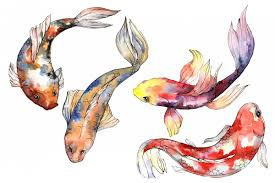 fairy goldfish watercolor png example image 1