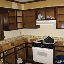 fresh refacing kitchen cabinets design kitchen cabinet