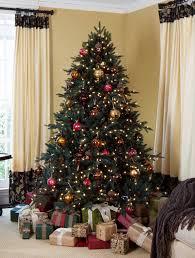 ... Aspen Silver Fir Tree-5 ...