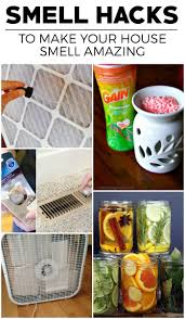 Interior and Exterior:Best 25 House Smell Good Ideas On Pinterest Home  Scents Diy 15
