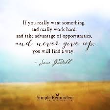 if you really want something and really work hard and take if you really want something and really work hard and take advantage of opportunities and never by jane goodall